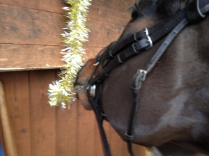 Dessie inspecting the decorations a little too closely