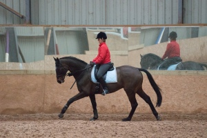 Unfortunately no show photos - so another ROR clinic photo instead.